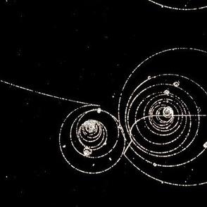 Bubble Chamber Physics