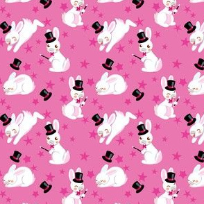 Rabbit Magicians