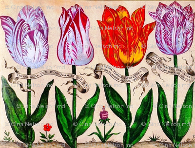 Rbotanical-livres-de-fleurs-1620-18_preview
