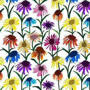 Coneflowers (white background)
