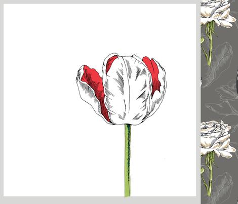 Botanical Pillows and Bonus Fabric fabric by pattysloniger on Spoonflower - custom fabric