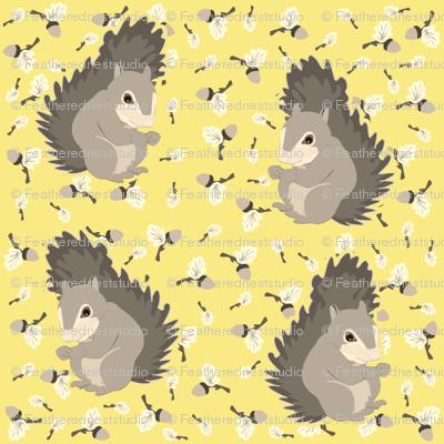 yellow_acorns_with_grey_squirrels