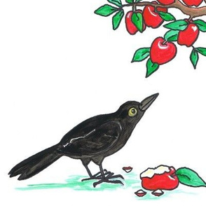 Crow_and_Apples