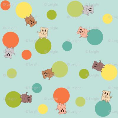 I See Spots (bright)