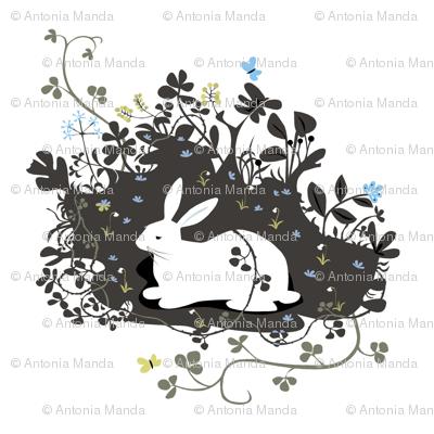 large_rabbit