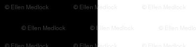 Black & White Gallery Stripe by Ellen Medlock Studio