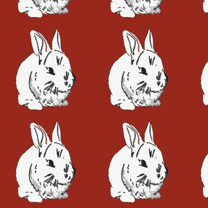 Year_of_the_Rabbit
