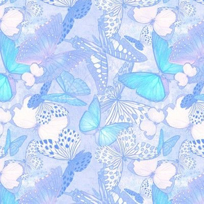 Butterfly Net: Background