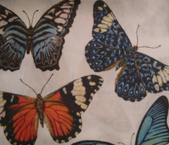 Rrrrrbutterfly_collage_for_fabric_comment_95148_preview
