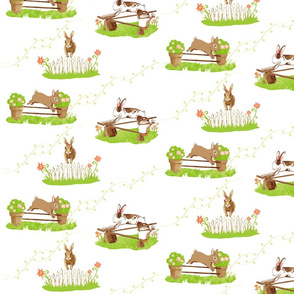 Bunny Jumpers