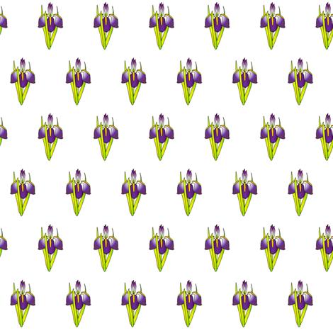 pattern_-_iris fabric by glimmericks on Spoonflower - custom fabric