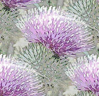 Pale purple thistle
