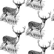 Rrr44736_deer_shop_thumb