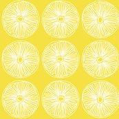 Rrrslice__citrus.ai_shop_thumb