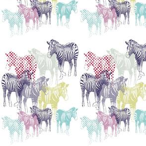 zebraspots-ch