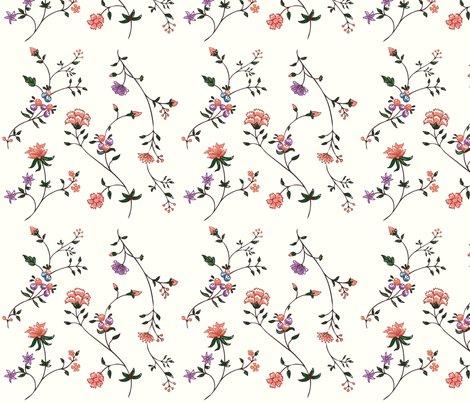 Rrrrr1795_va_indian_cotton_shop_preview