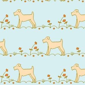 terrier orange