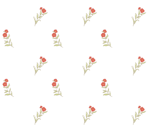 1795-1800 Carnation Print fabric by americanduchess on Spoonflower - custom fabric