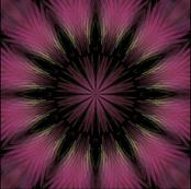 Pink_Chiffon