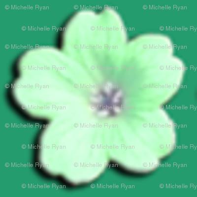 Little Green Flowers