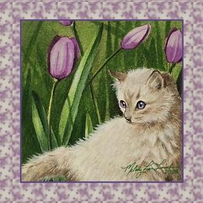 Little Gray Kitten