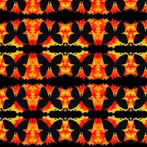 butterfly_in_fire_copy