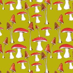 champignons_mignons_fond_vert_L