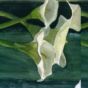 delicate lillies 2