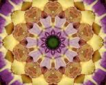 Rkaleido_purple_glad_2_thumb