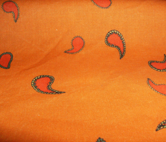 Small Paisley on Pumpkin Orange
