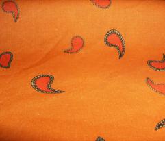 Small Paisley on Pumpkin Orange
