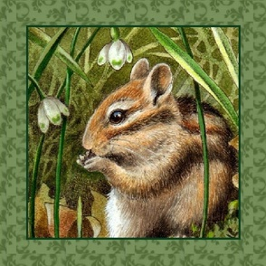 Spring Chipmunk