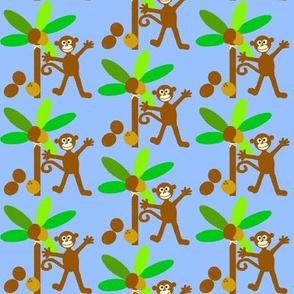 monkey island / coconuts
