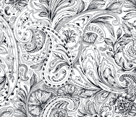 Paisley - Black&White fabric by jane_kriss on Spoonflower - custom fabric