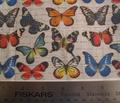 Rrsm_butterflies_on_grey_copy_comment_95141_thumb