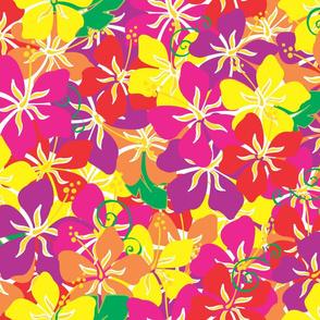 Hawaiian_Hibiscus