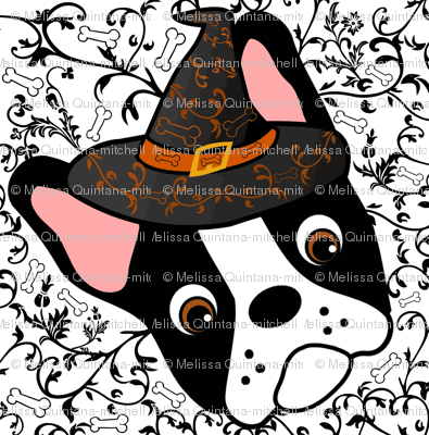 Witchypup the Boston Terrier