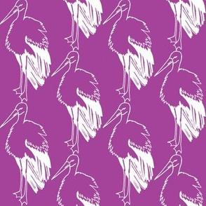 Purple Stork