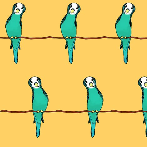 Rrrrrrparakeets_on_gold_shop_preview