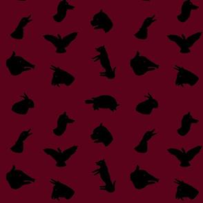 shadowgraphy-repeat-crop