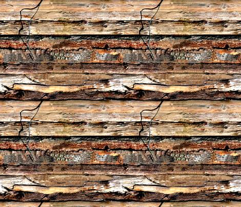 Driftwood fabric by koalalady on Spoonflower - custom fabric
