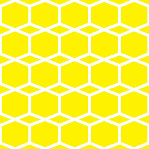 Modern Lattice Lemon