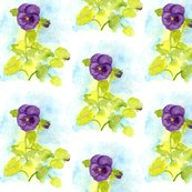 Rrrflower_purple_pansy_shop_thumb