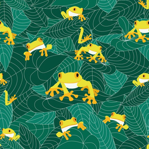 The jungle of the frogs