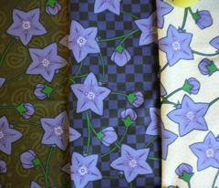 Rchinese_balloonflowers_-_paisley_comment_71014_preview