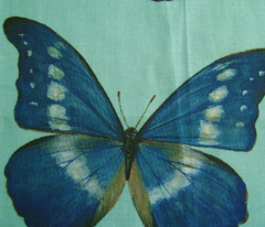 Rrrrrrrblue_butterflies_fabric_copy_comment_95486_preview
