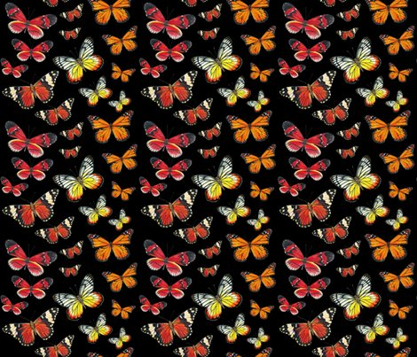 Rrrrrorange_butterflies_fabric_on_black_shop_preview