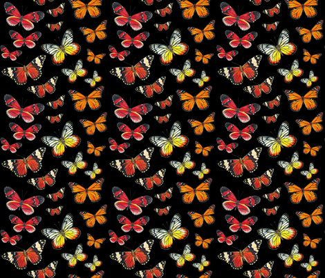 Orange Butterfly Paintings fabric by angelaanderson on Spoonflower - custom fabric