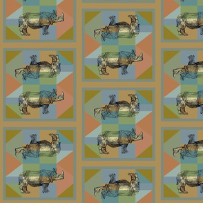 Rhino6