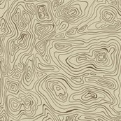 Rrsepia_map_contours_shop_thumb